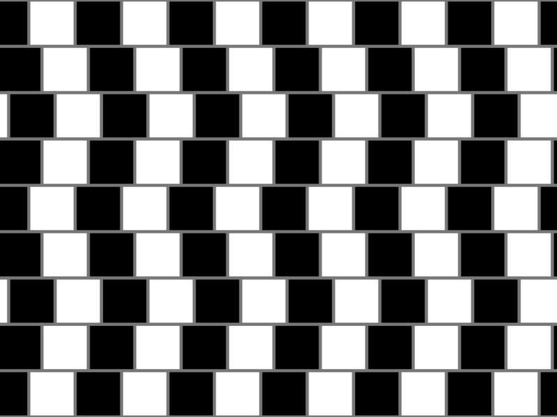 Дороги одинаковые или нет? Соцсети гадают над новой оптической иллюзией