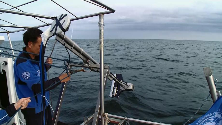 Подводные археологи предпочитают «Балтику»
