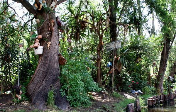 Остров кукол: в Мексике нашли самую жуткую в мире достопримечательность