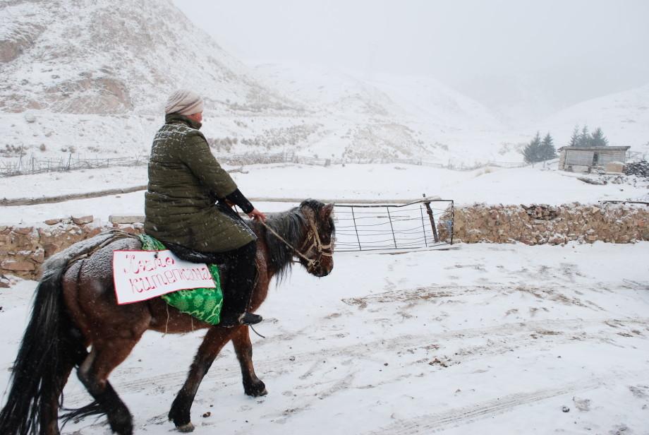 В Кыргызстане организовали «кочевую» библиотеку