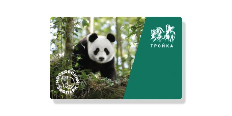 В Москве начали продавать карту «Тройка» с изображением панды