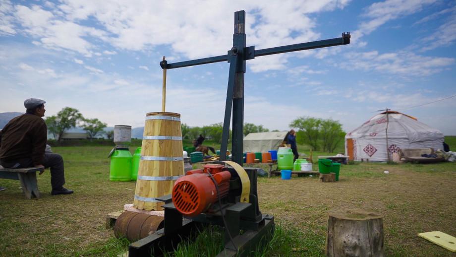 Кумыс – исцеляющий напиток скифов