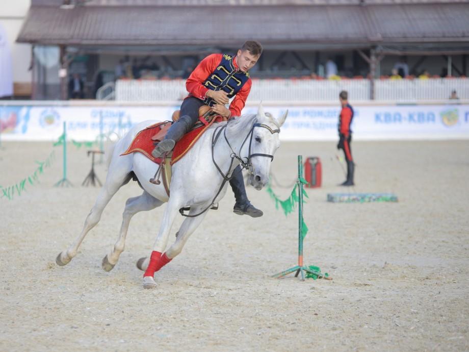 Конный спорт: лучших всадников отобрали на Олимпиаду-2020