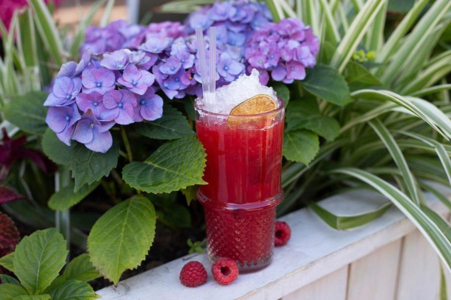 Из ягод, базилика и даже из огурца : как приготовить летние лимонады