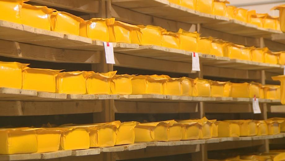 Кусочек Швейцарии: как в Кыргызстане готовят сыр по европейским рецептам