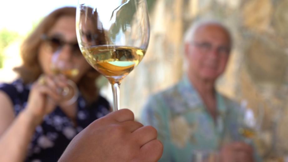 Бизнес по-армянски: как в Арагацотнской области производят вино, шоколад и сухофрукты?