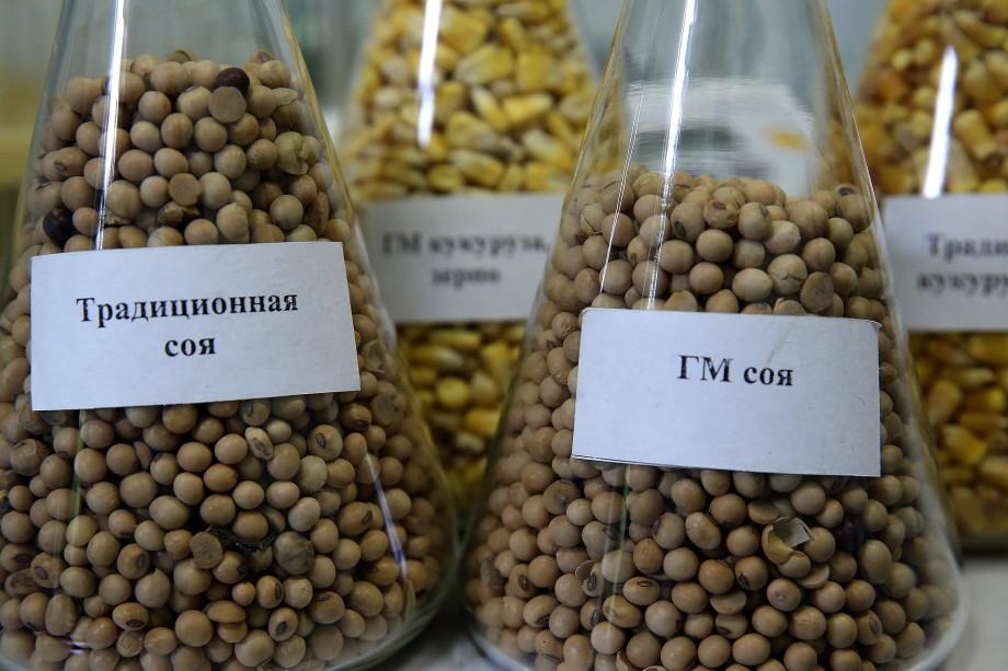 Соя вместо мяса, ГМО и слабые дети: диетолог – об опасностях вегетарианства