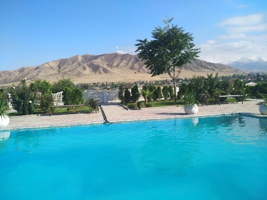 Тропический рай в Кыргызстане: житель Бишкека создал Пальмовый центр