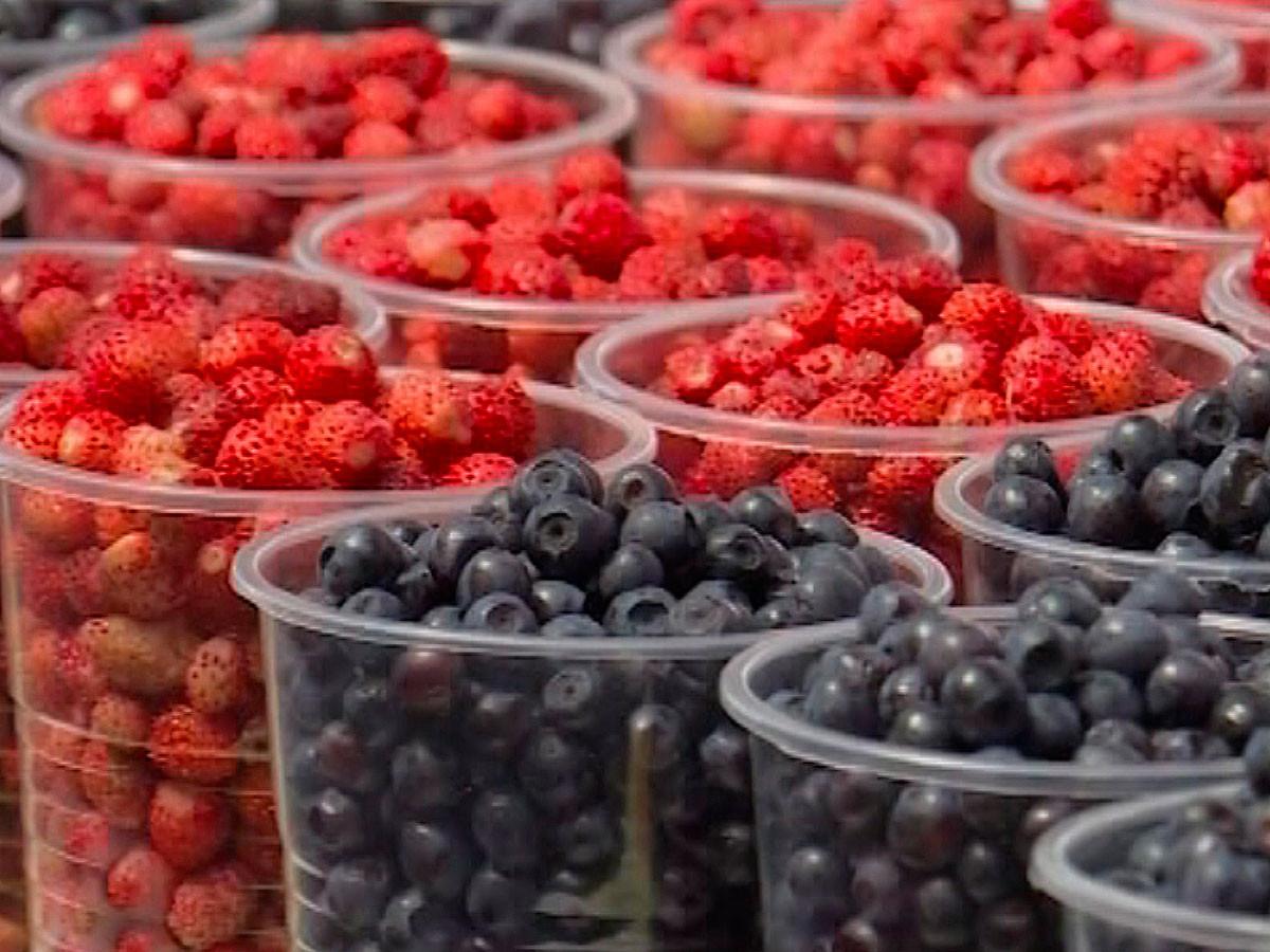 Секрет долголетия: медики назвали продукты, помогающие дожить до глубокой старости