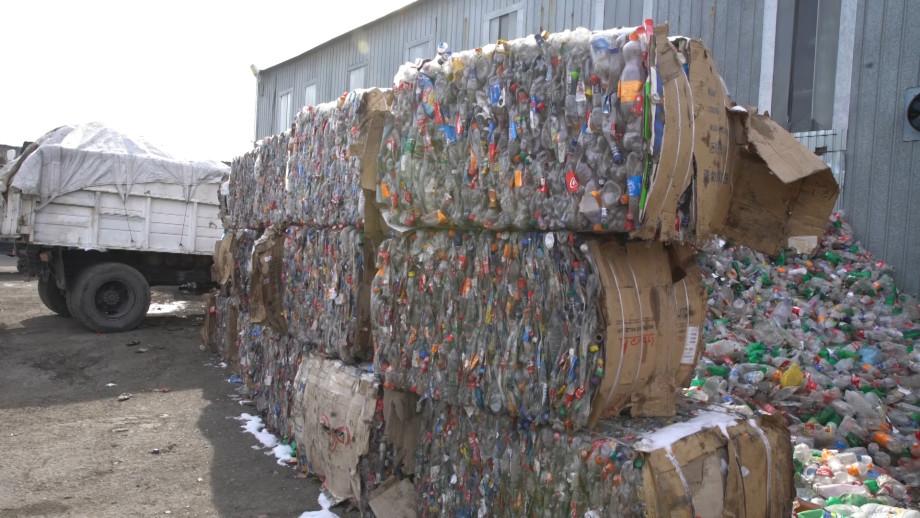 Вторая жизнь отходов: как в Армении превращают мусор в синтепон и упаковочные коробки