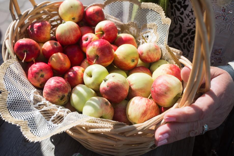 Яблочный Спас: в чем главный смысл праздника?