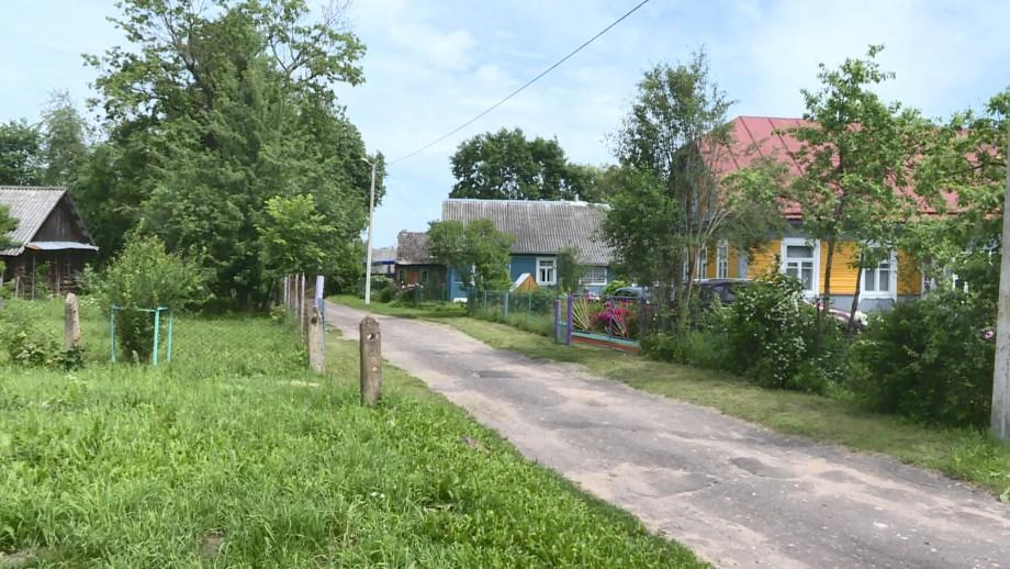 Найти свои «Чудесные холмы»: как живет белорусская деревня, куда самоизолировалась творческая молодежь