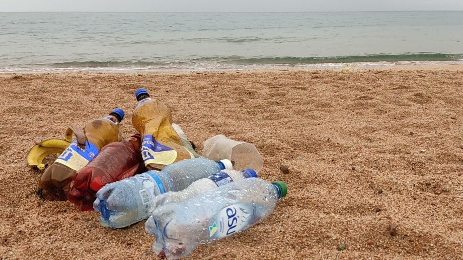 Подводный клининг: энтузиасты самостоятельно очищают дно озера Иссык-Куль
