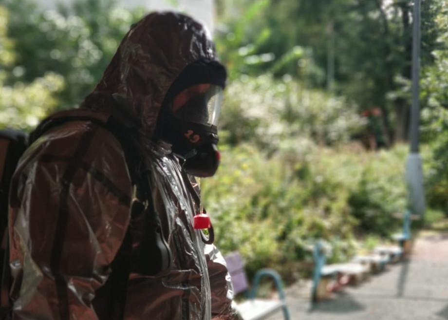В Москве спасатели достали на веранде в начальной школе осиное гнездо