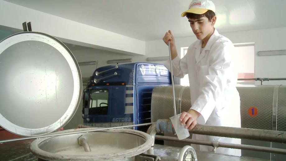 Из натурального молока: как делают армянский сыр?