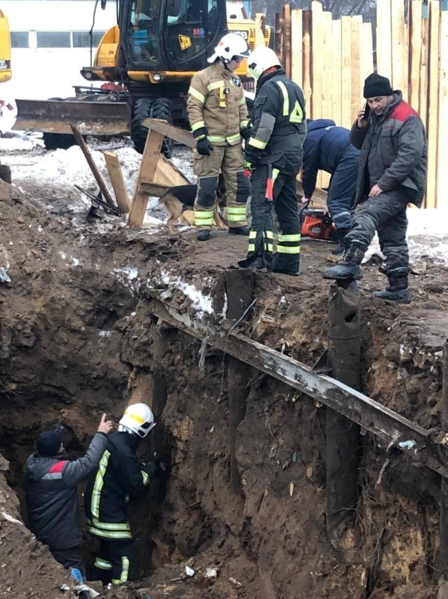 В Москве спасли щенков, застрявших в подземной трубе