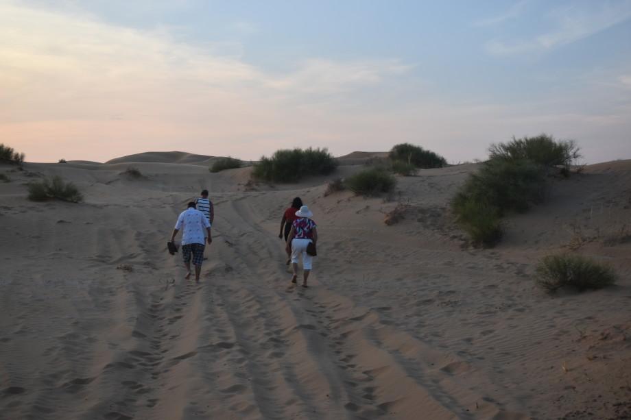 Бархан Большой брат: как попасть в астраханскую пустыню и сделать уникальные фотографии?