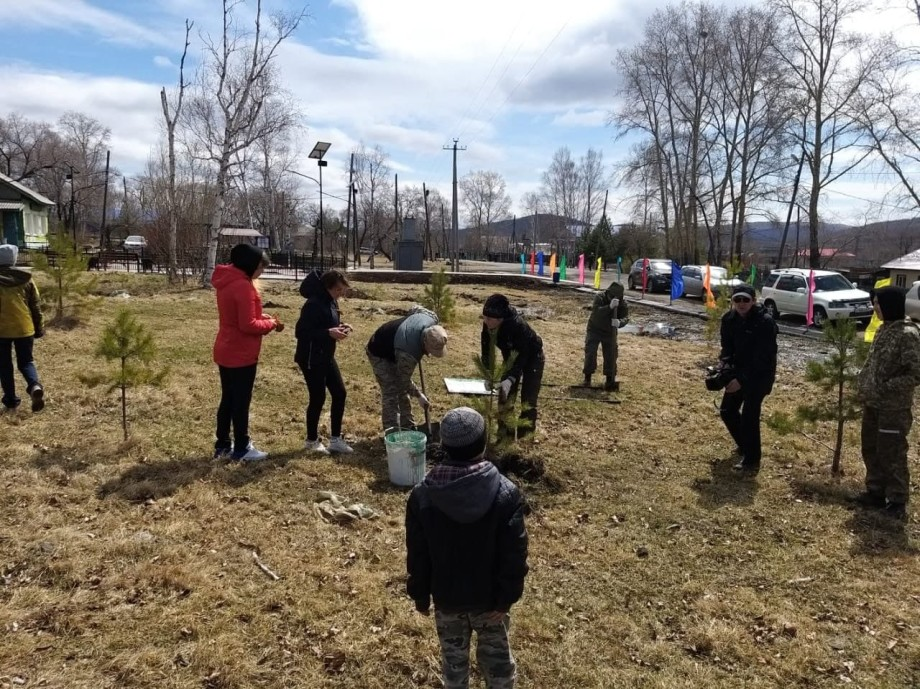 Международная акция «Сад памяти» стала новым форматом майских праздников