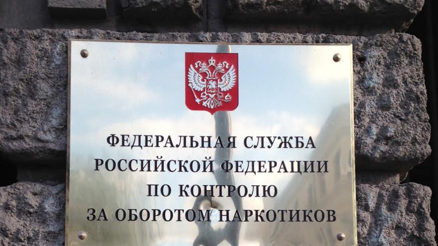 ФСКН сообщила об изъятии крупнейшей партии «спайсов»