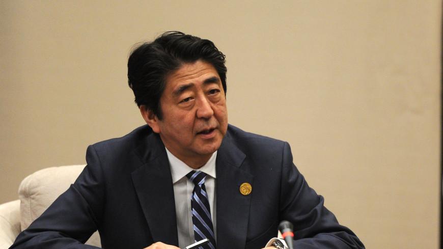 Премьер Японии признался, что скормил жене БАД для собак