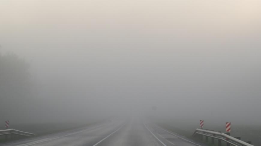 Москву накроет густой туман