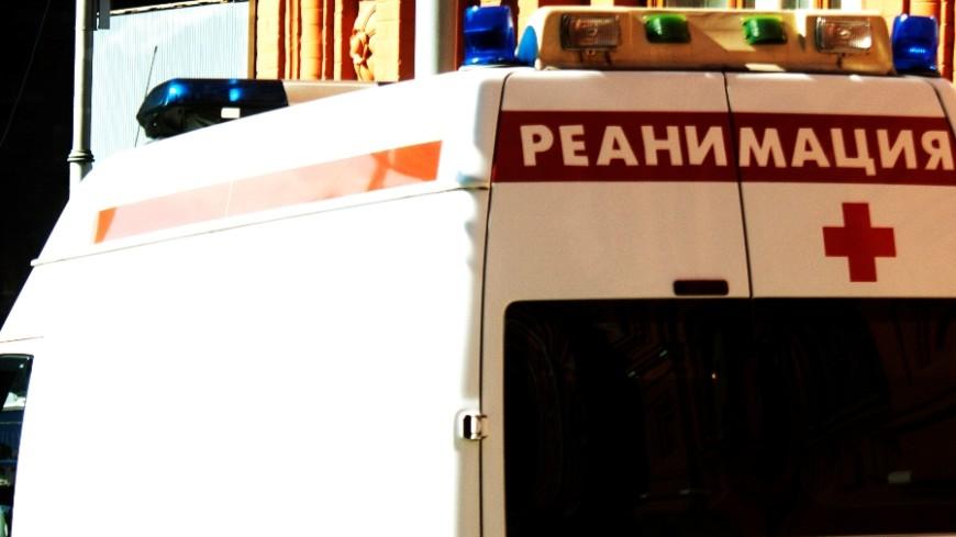Автобус столкнулся с лесовозом: число жертв выросло до шести
