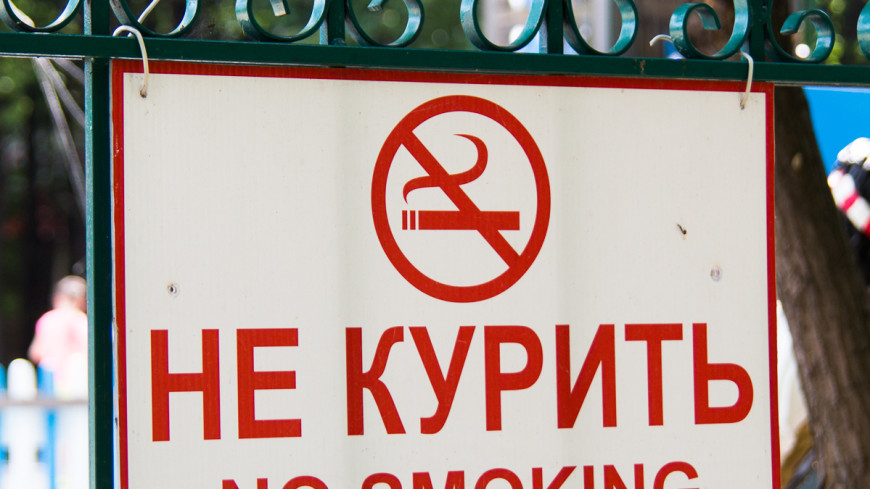Фильтр для сигарет: зачем России маркировка на табачную продукцию