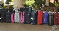Первые 170 туристов разорившейся Ted Travel покинули Турцию