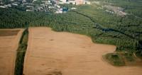 Кубанская чиновница задекларировала 6 млн «квадратов» земли