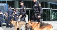 В Каталонии убили террориста с муляжом пояса смертника