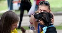 Афиша на выходные: Выставка бездомных животных и Неделя российского кино