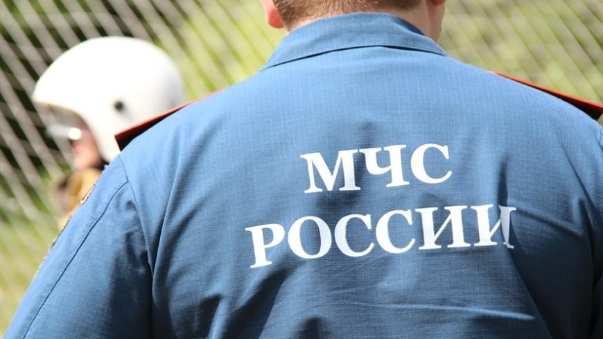 На юго-западе Москвы горело кафе, площадь пожара достигала 150 кв. м