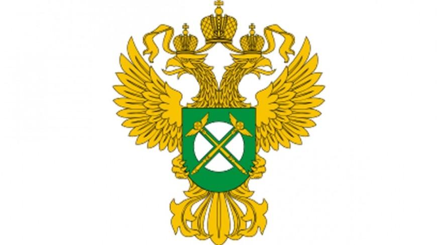 ФАС признала поставщиков техники для ГАС «Выборы» виновными вкартельном сговоре