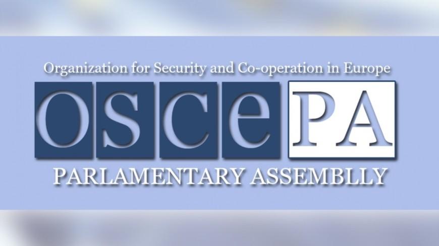 ПА ОБСЕ направит на президентские выборы в Россию 111 наблюдателей