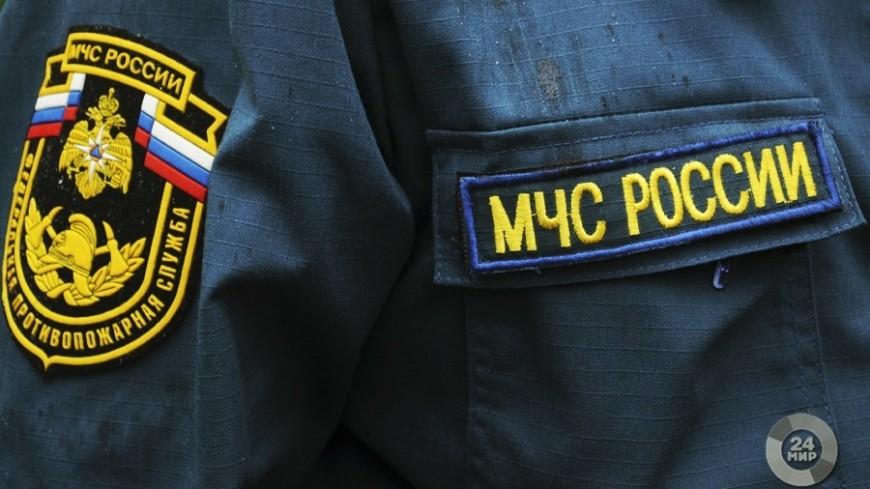 МЧС провело противопожарные рейды по московским паркам
