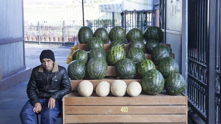 «Полосатая» Москва: где купить арбузы и дыни