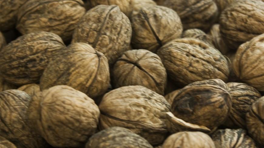 Грецкие орехи активируют область мозга, контролирующую аппетит