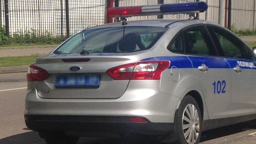 "Фото: Светлана Родина, ""«МИР 24»"":http://mir24.tv/, дпс, полиция"