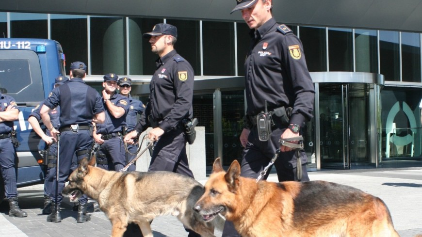 Полиция испании, кинологи,