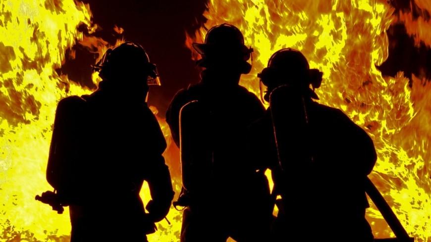 ВИталии судят пожарных, которые запремию поджигали леса