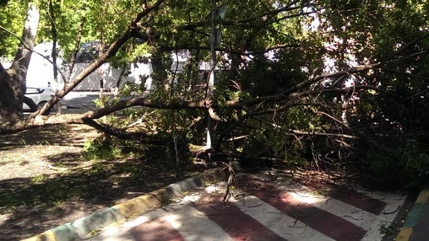 ВИталии из-за урагана 4 человека погибли идвое пропали без вести