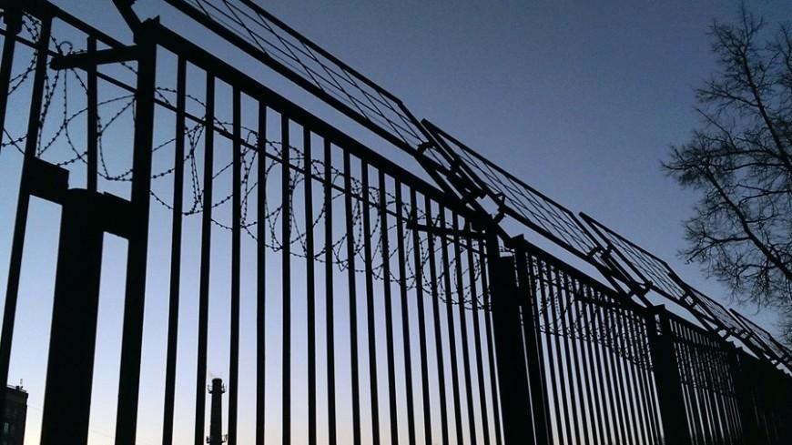 Американке угрожает до20 лет тюрьмы задоведение досуицида через СМС