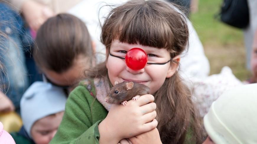 Дети и чувство юмора
