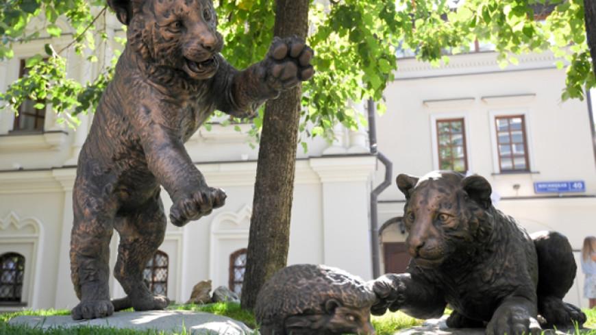 В столице России появится монумент амурским тигрятам