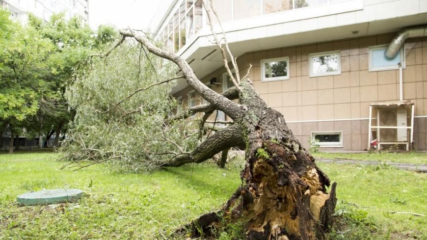 Ураган в Башкортостане снес крыши десятка домов