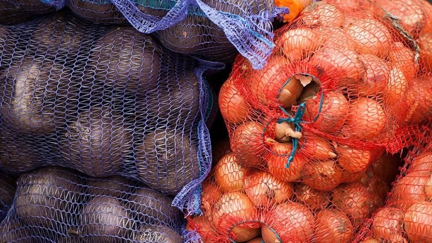 """©  Фото: Анна Тимошенко / """"«МИР 24»"""":http://mir24.tv/, овощи, свекла, бурак, редька"""