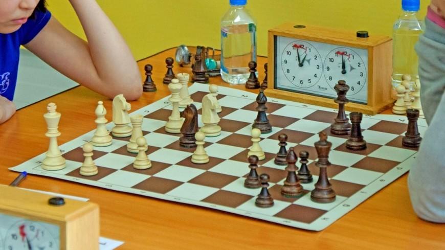 В программу российских школ могут ввести шахматы