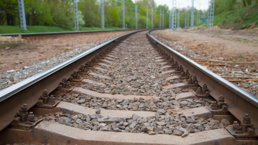 РЖД: Строительство ВСМ «Москва— Казань» начнётся в последующем году