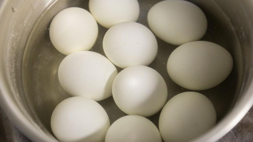 20 тонн яиц сфипронилом отыскали  вИспании