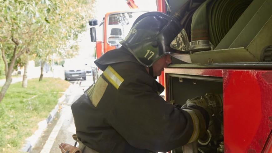 ВХмельницкой области произошел масштабный пожар наскладах сконоплей